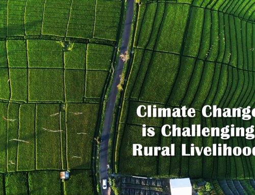 Climate Change is Challenging the Rural Livelihoods