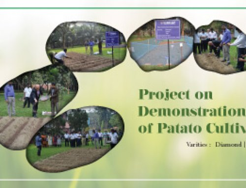 Project on Demonstration of Potato Cultivation