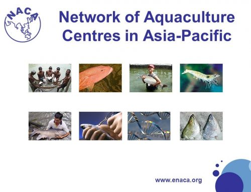 The 2nd 2020 Training on Mariculture Technologies for the Asia-Pacific Region: Aquaculture Biosecurity