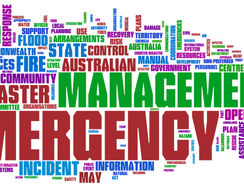 International Models in Emergency Management