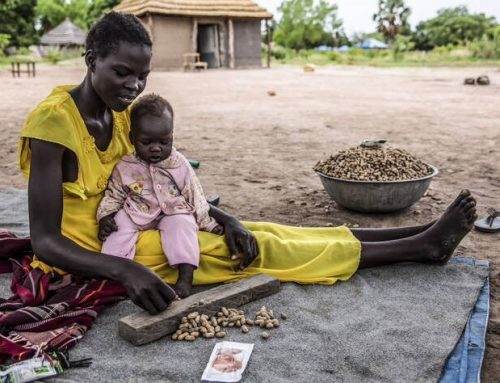 Acute hunger set to soar in over 20 countries, warn FAO and WFP