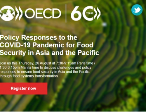 Register for a free webinar to explore policy responses  to COVID-19 for food security in Asia and the Pacific
